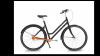 Vélo hollandais à cardan Alu mixte