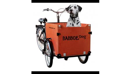 Babboe Big triporteur nexus 7