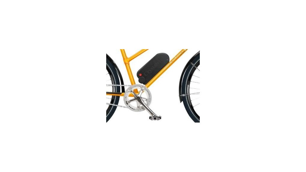Batterie 375 Wh dans caisse de vélo porteur