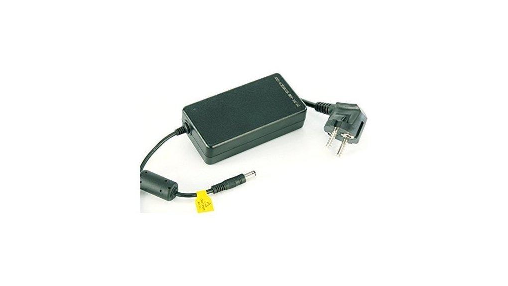 Chargeur 36 V 2A pour batterie bidon 478 WH