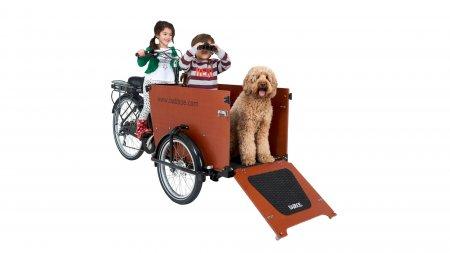 Triporteur électrique pour transporter son chien