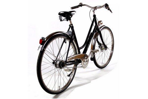 Vélo hollandais Birdy vue arrière