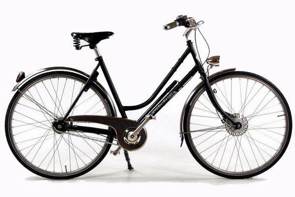Vélo hollandais Birdy vue latérale