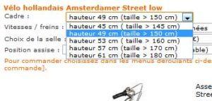 taille-cadre-velo-hollandais