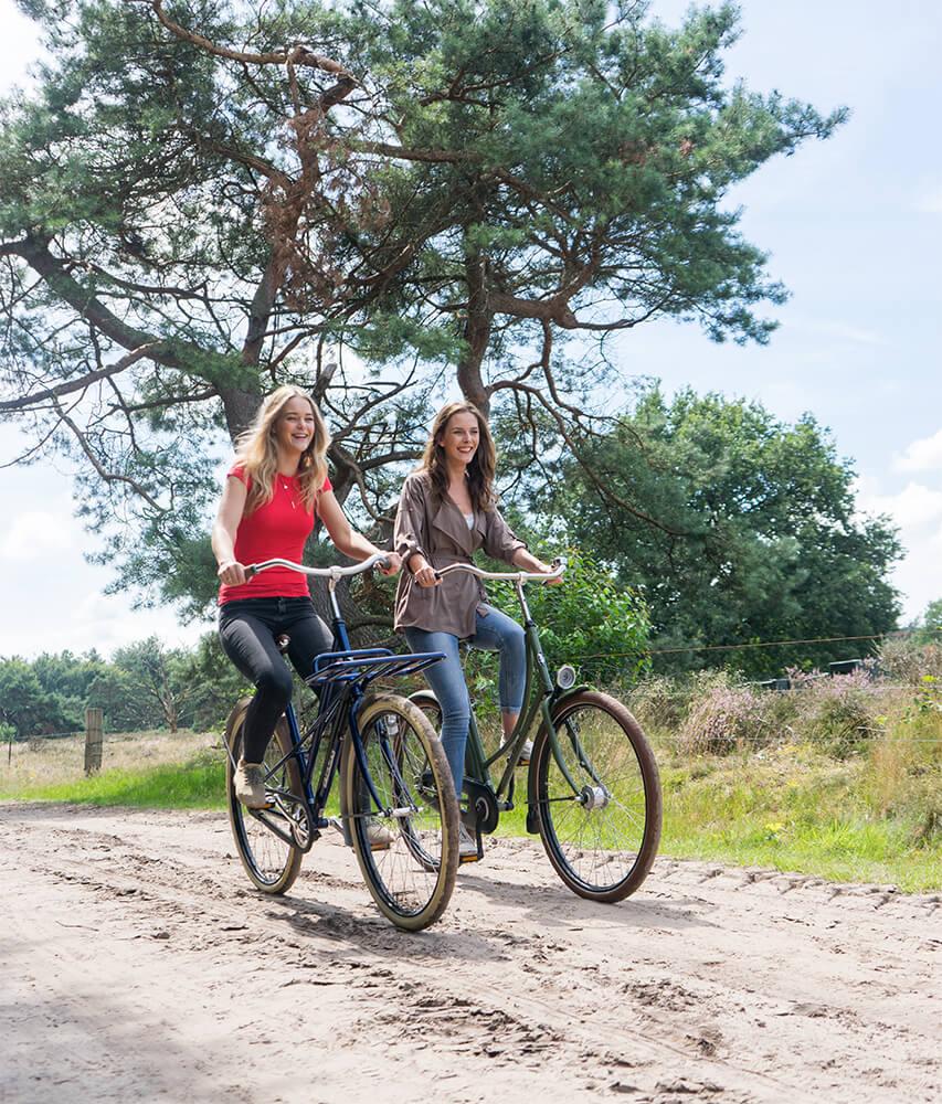 Des balades en vélo électriques, c'est possible !
